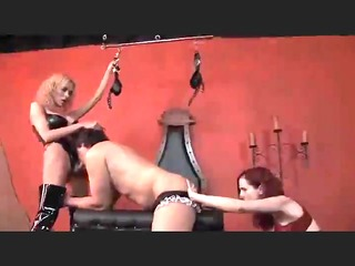 mz berlin dominated a sissy and a shemale10