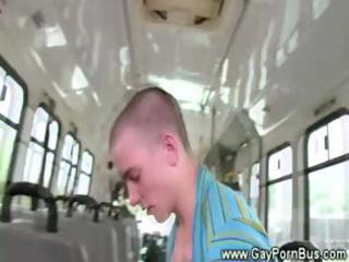 hard anal fucking on a bus whille driving around