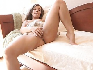 sofia highly hot dark brown flashing pants and