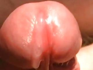 closeup of serial cummings